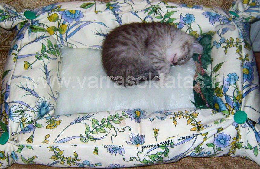 Cica fekhely varrás kezdőknek